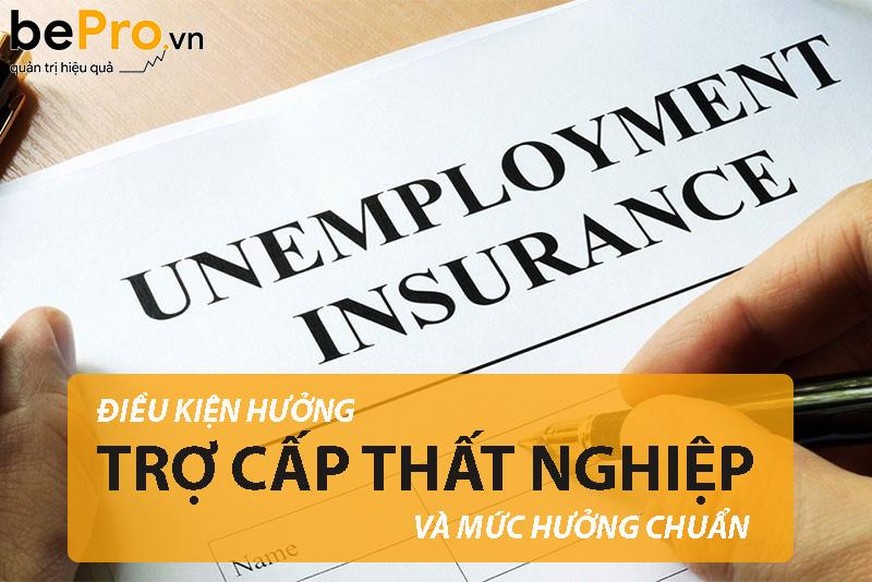 Điều kiện hưởng trợ cấp thất nghiệp và mức hưởng chuẩn